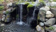 Waterfalls, ponds, water gardens