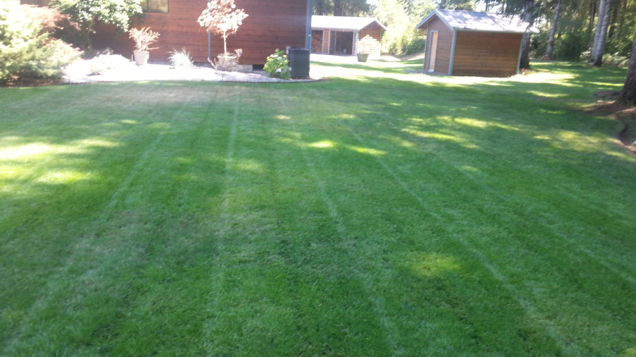 Complete yard and lawn care - Installation - Maintenance ...